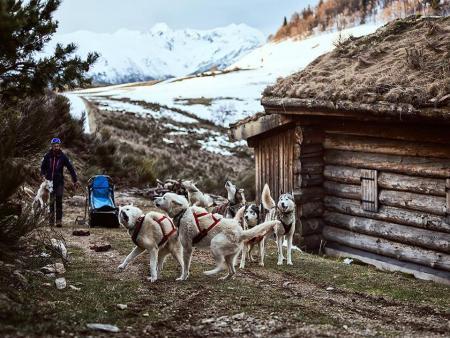 Trappeur en Pyrénées Ariégeoises avec chien de traîneau et balade en raquette
