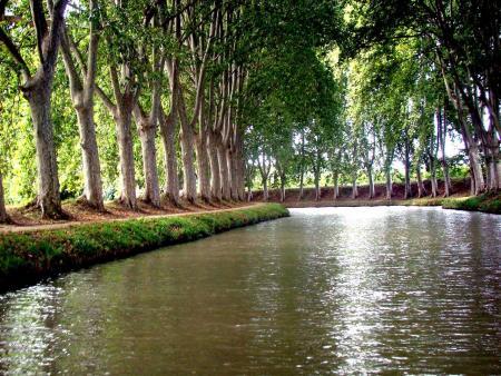 Croisière sur le Canal du Midi à Carcassonne