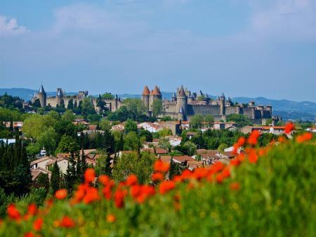 Visite guidée de 1h30 de la Cité de Carcassonne
