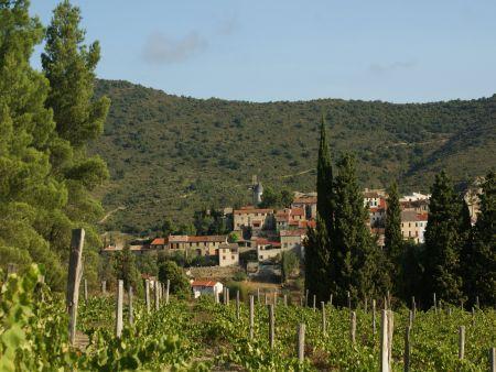 Cucugnan le village et le vignoble