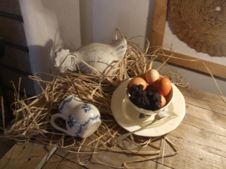 Week-end découverte de la truffe en Aude Pays Cathare