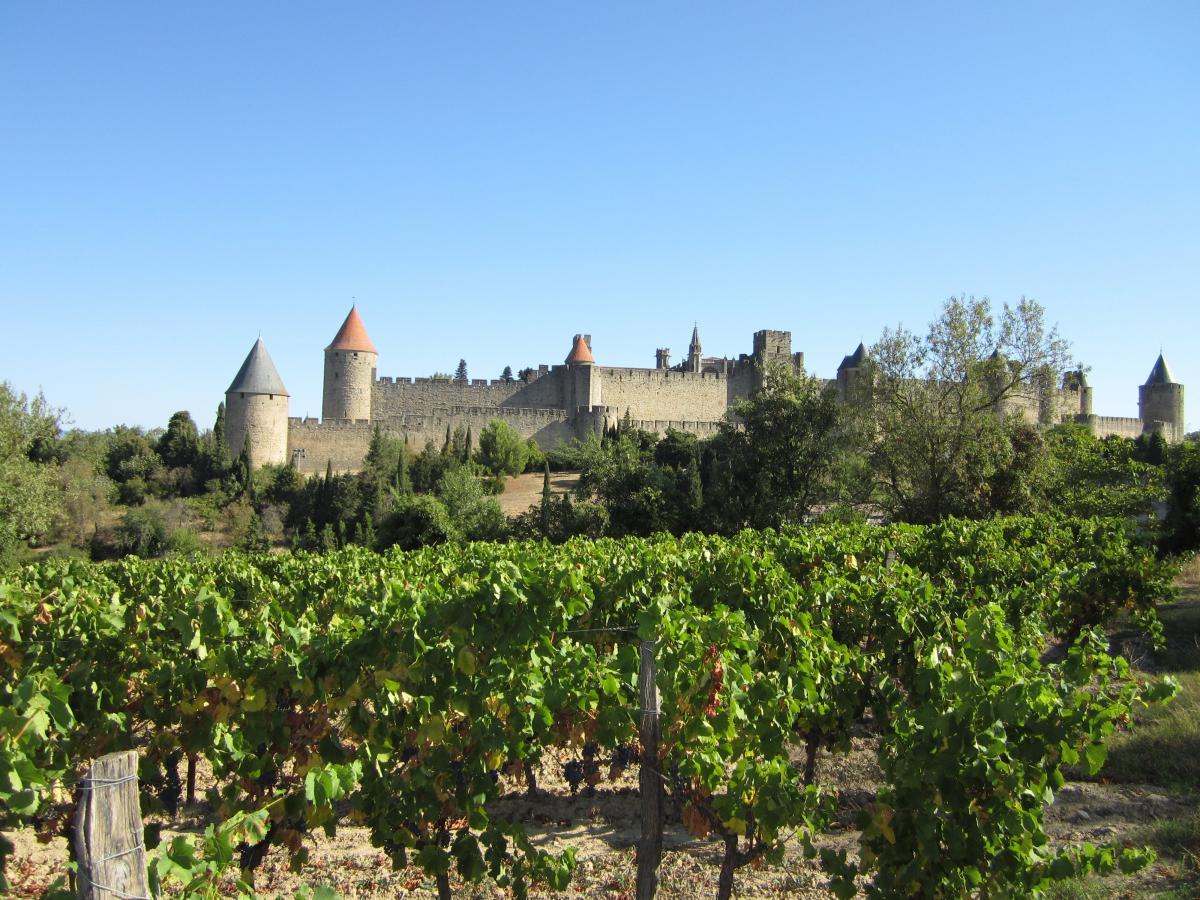 Carcassonne et la route des vins - En autotour