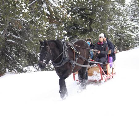 Le Carrousel des neiges sur le plateau de Beille en Pyrénées Ariégeoises