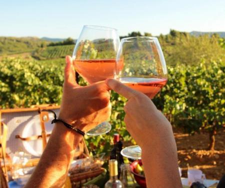 Balade en Corbières accueil vigneron