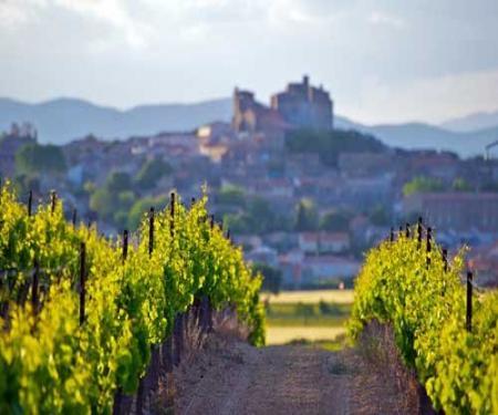 Week-end en Corbières balades et vignobles