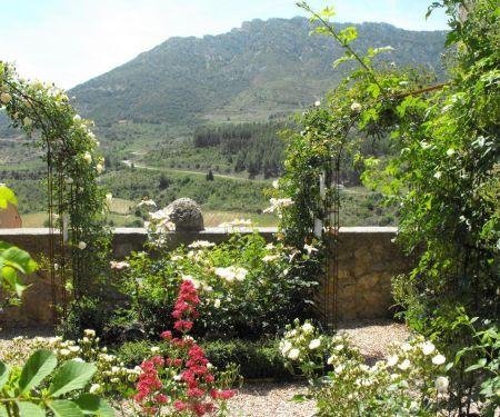 Cucugnan, château de Quéribus et vignoble